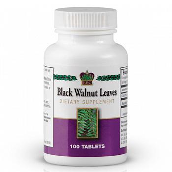 Листья черного ореха (Black Walnut Leaves)
