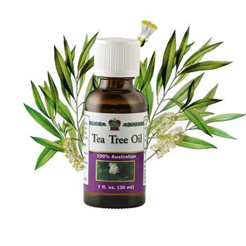 Масло чайного дерева косметическое (Tea Tree Oil)